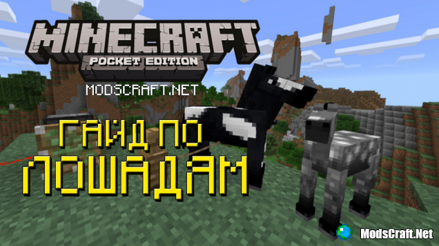 1464947862_a-guide-to-horses-in-minecraft-pocket-edition.png